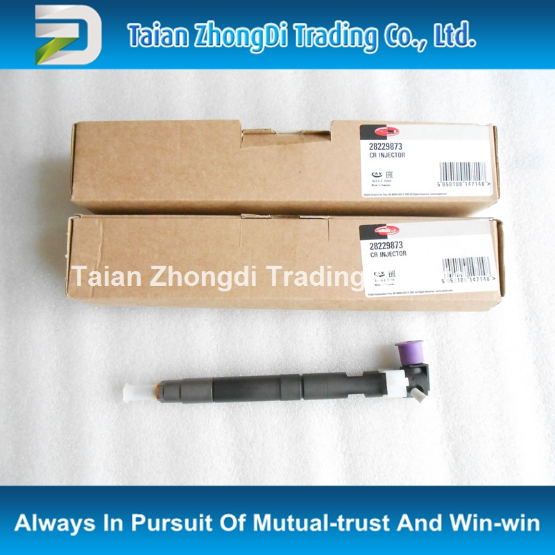 TAZONDLI oriignal and new common rail injector 28229873 33800-4A710 33800 4A710
