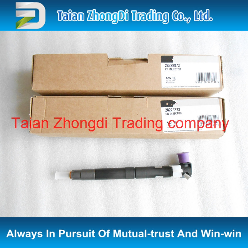Genuine and new Common rail injector 28229873 for 33800-4A710 ,338004A710