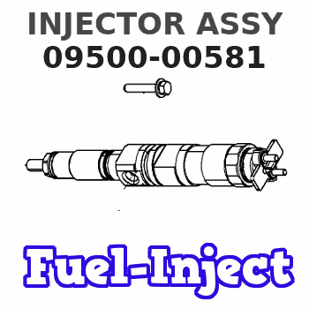 09500-00581 INJECTOR ASSY