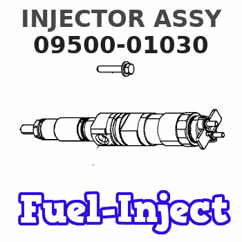 09500-01030 INJECTOR ASSY