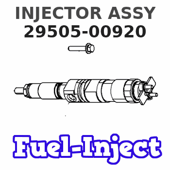 29505-00920 INJECTOR ASSY