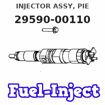 29590-00110 INJECTOR ASSY, PIE