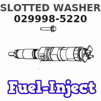 029998-5220 SLOTTED WASHER