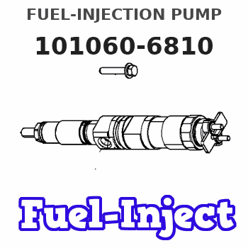 101060-6810 FUEL-INJECTION PUMP