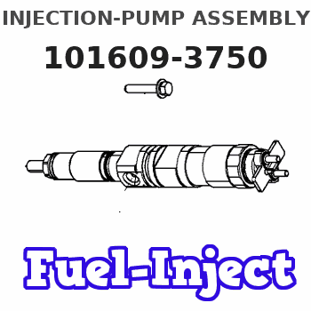 101609-3750 INJECTION-PUMP ASSEMBLY