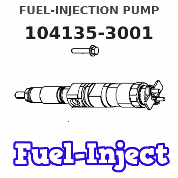104135-3001 FUEL-INJECTION PUMP