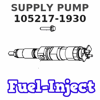 105217-1930 SUPPLY PUMP