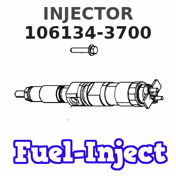 106134-3700 INJECTOR