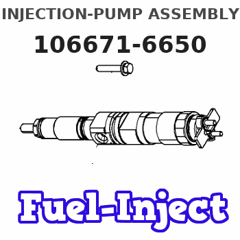 106671-6650 INJECTION-PUMP ASSEMBLY