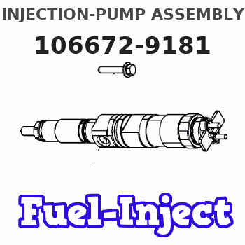 106672-9181 INJECTION-PUMP ASSEMBLY