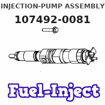 107492-0081 INJECTION-PUMP ASSEMBLY