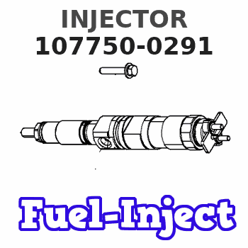 107750-0291 INJECTOR