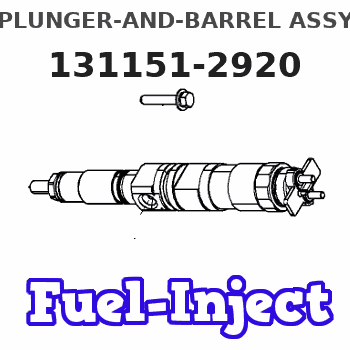 131151-2920 PLUNGER-AND-BARREL ASSY