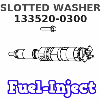 133520-0300 SLOTTED WASHER