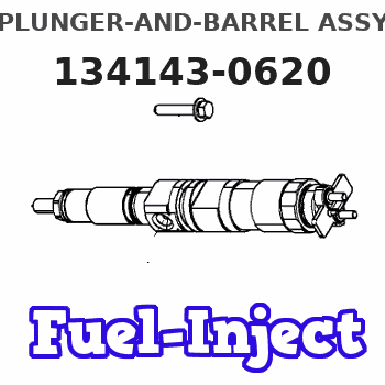 134143-0620 PLUNGER-AND-BARREL ASSY