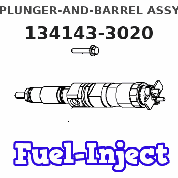 134143-3020 PLUNGER-AND-BARREL ASSY