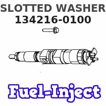 134216-0100 SLOTTED WASHER