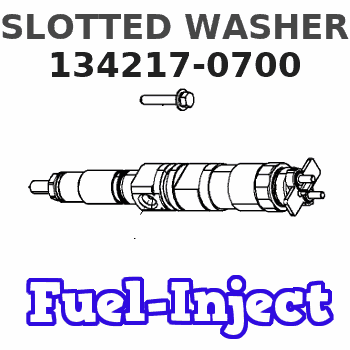 134217-0700 SLOTTED WASHER
