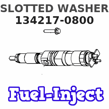 134217-0800 SLOTTED WASHER