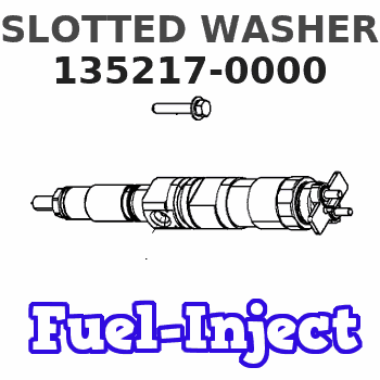 135217-0000 SLOTTED WASHER