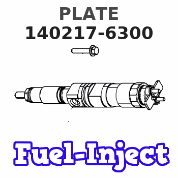 140217-6300 PLATE