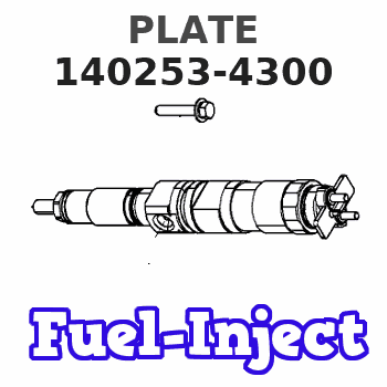 140253-4300 PLATE