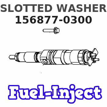 156877-0300 SLOTTED WASHER