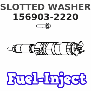 156903-2220 SLOTTED WASHER