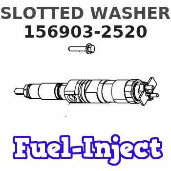 156903-2520 SLOTTED WASHER