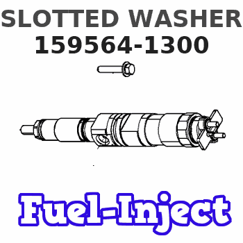 159564-1300 SLOTTED WASHER